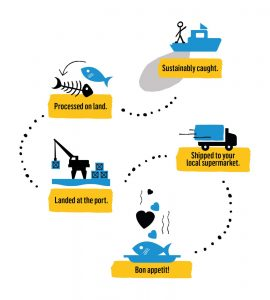 Traceability and processing